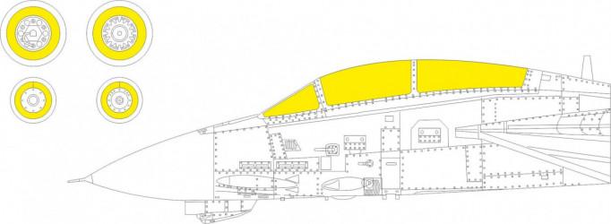 EDUARD MASK F-14B